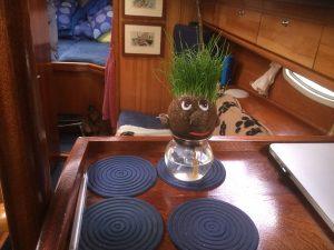 Mr Grasshead Swan (temporary crew member)